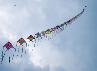 kites